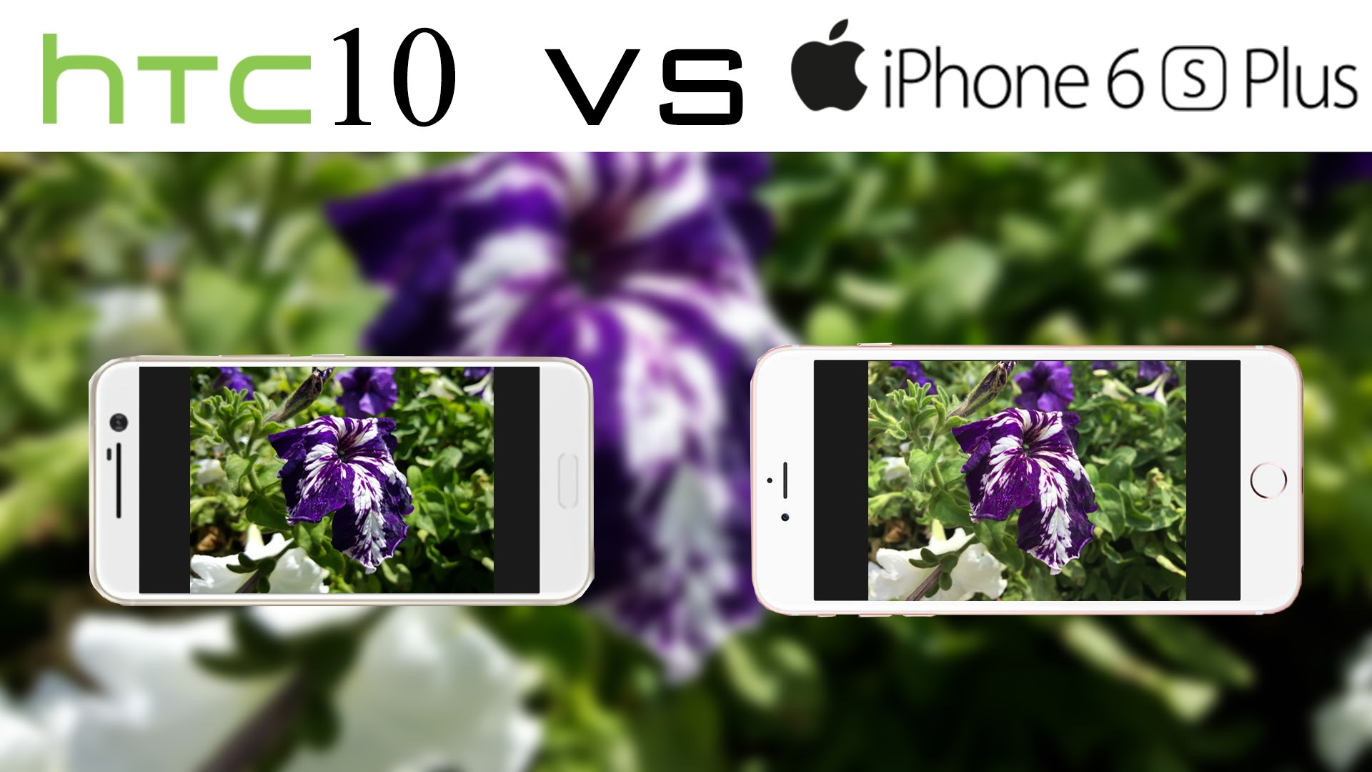 Camera quality: HTC 10 vs iPhone 7