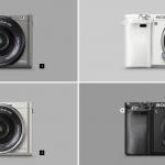 Mirrorless Cameras In 2018